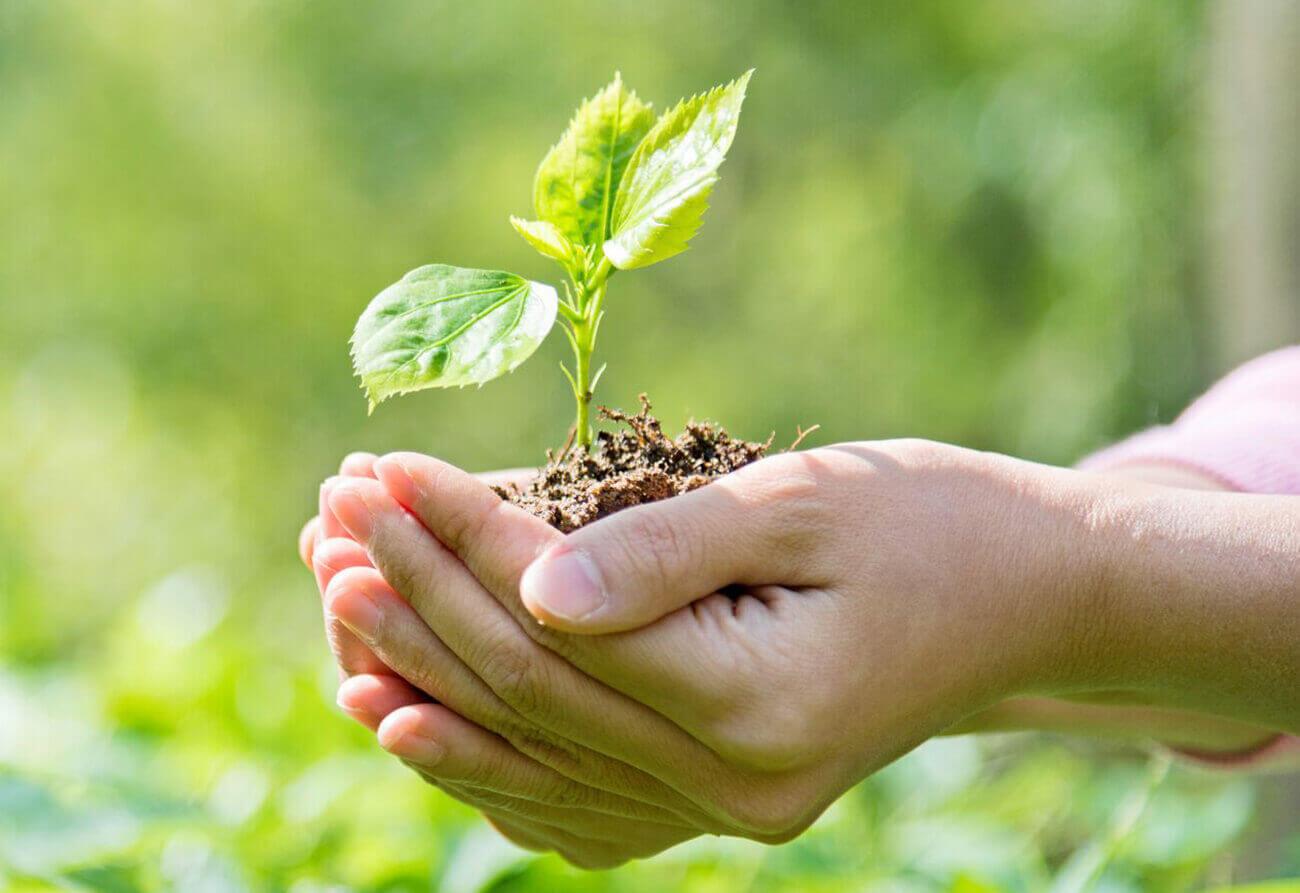 environmental law nj
